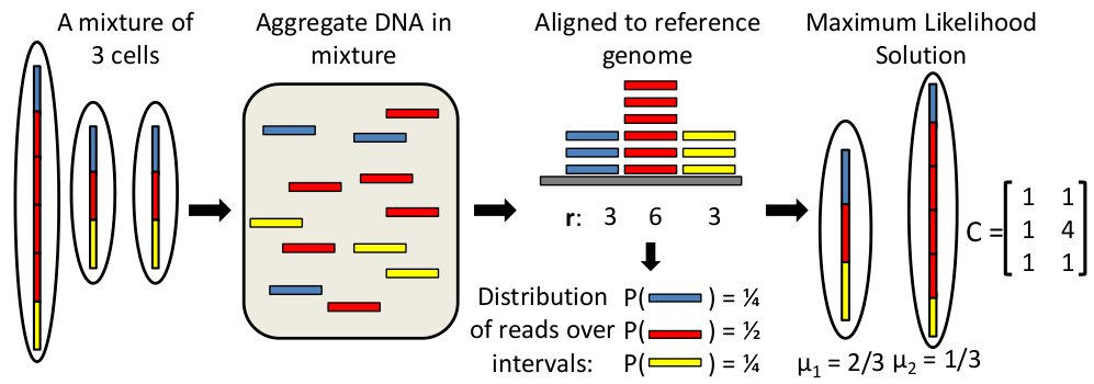 heterogeneity in tumors an overview With this overview of  alter tumor transcriptomes indicative of a functional consequence that likely explains the transcriptional heterogeneity among tumors,.